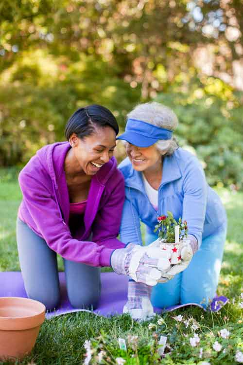 Helping Seniors with Gardening