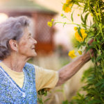 Outdoor Home Care Activities in Burlington, VT