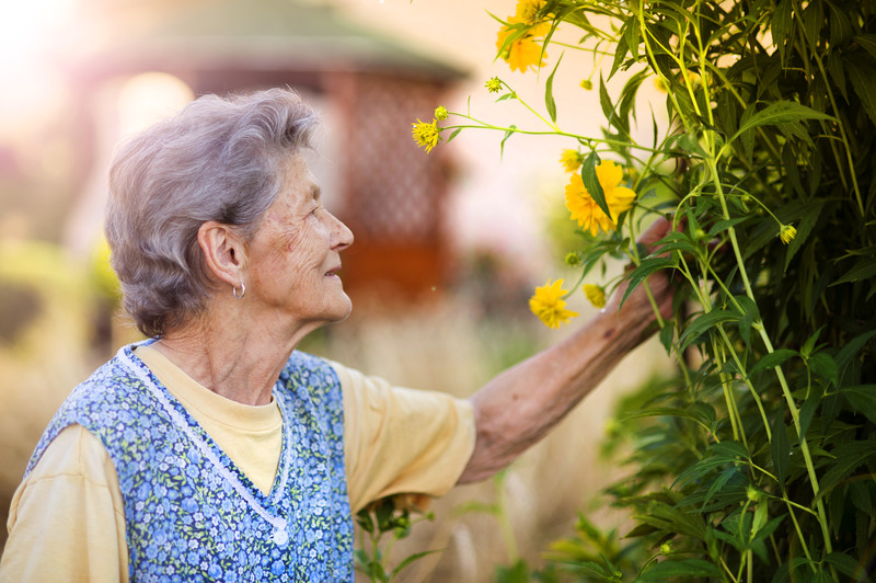 home care in the spring