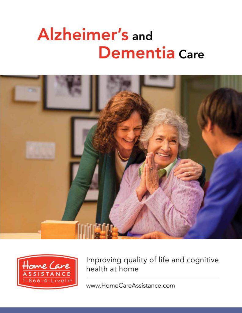 Alzheimer's Care and Dementia Care Plan Guide Cover